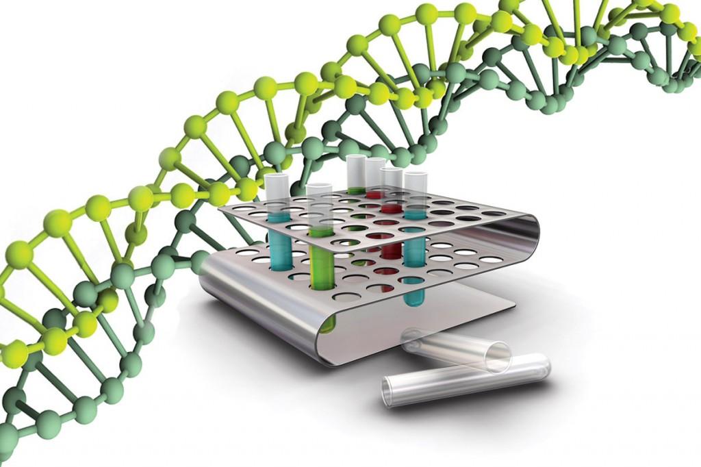 с помощью полимеразной цепной реакции существует возможность выявить ДНК вируса гепатита В.