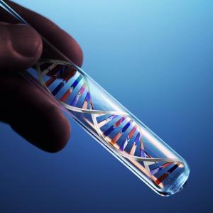 на папилломавирус выполняют ДНК-анализ биологического материала (выделения, сперма, кровь) с помощью ПЦР.