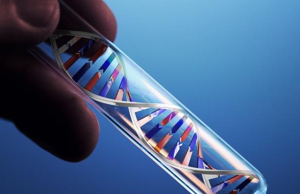 обнаружение ДНК половых инфекций методом ПЦР