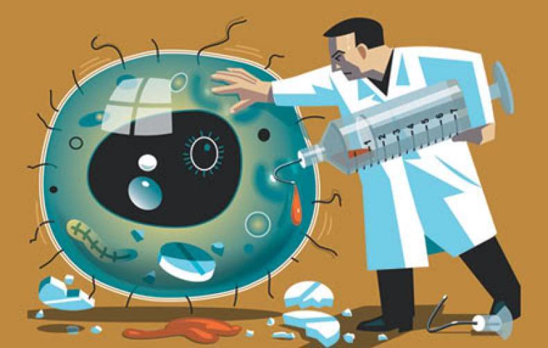 устойчивость возбудителей венерических болезней к лечению после самолечения